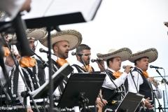 Almendro 2017-20