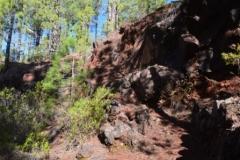 8. Camino de las fuentes estrechamiento del sendero