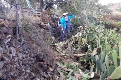 Fotos 20 Mayo Nuevo Sendero Montaña Miraflores (1)