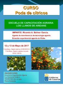 Jornada poda de cítricos 2017-001 (1)