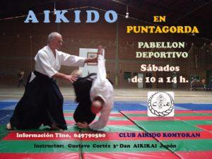 CARTEL AIKIDO PUNTAGORDA-001