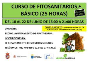 FITOS BASICO PUNTAGORDA JUNIO2018 (SERVICIOS SOCIALES) GRATUITO-001