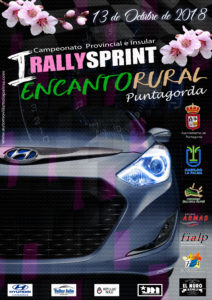 cartel rally din a3