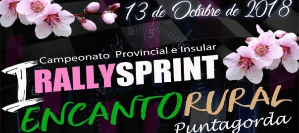 cartel rally portada - copia